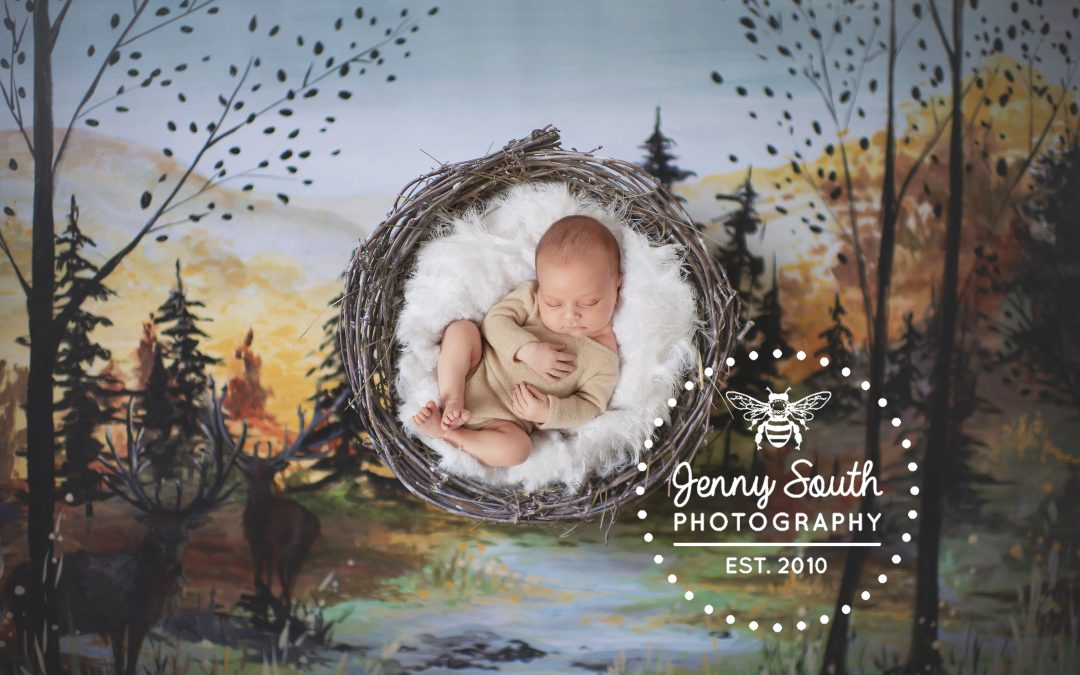 Baby N's Autumn Newborn Session